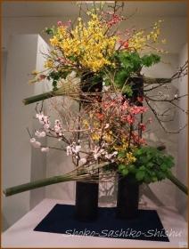 20170320  花材  6   いけばな協会展