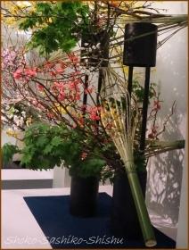 20170320  花材  7   いけばな協会展