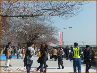 20170404  隅田川  2   向島散歩
