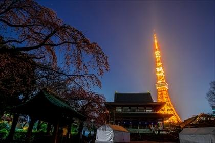 2017-3-29 東京タワー08 (1 - 1DSC_0034-HDR)_R