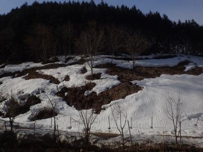雪に覆われた山間の里山