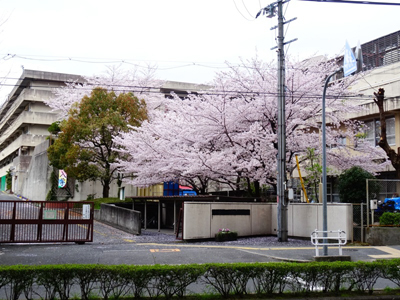 DSC00042a_中学校前