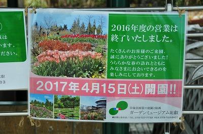 DSC_8276_2017031817400027d.jpg