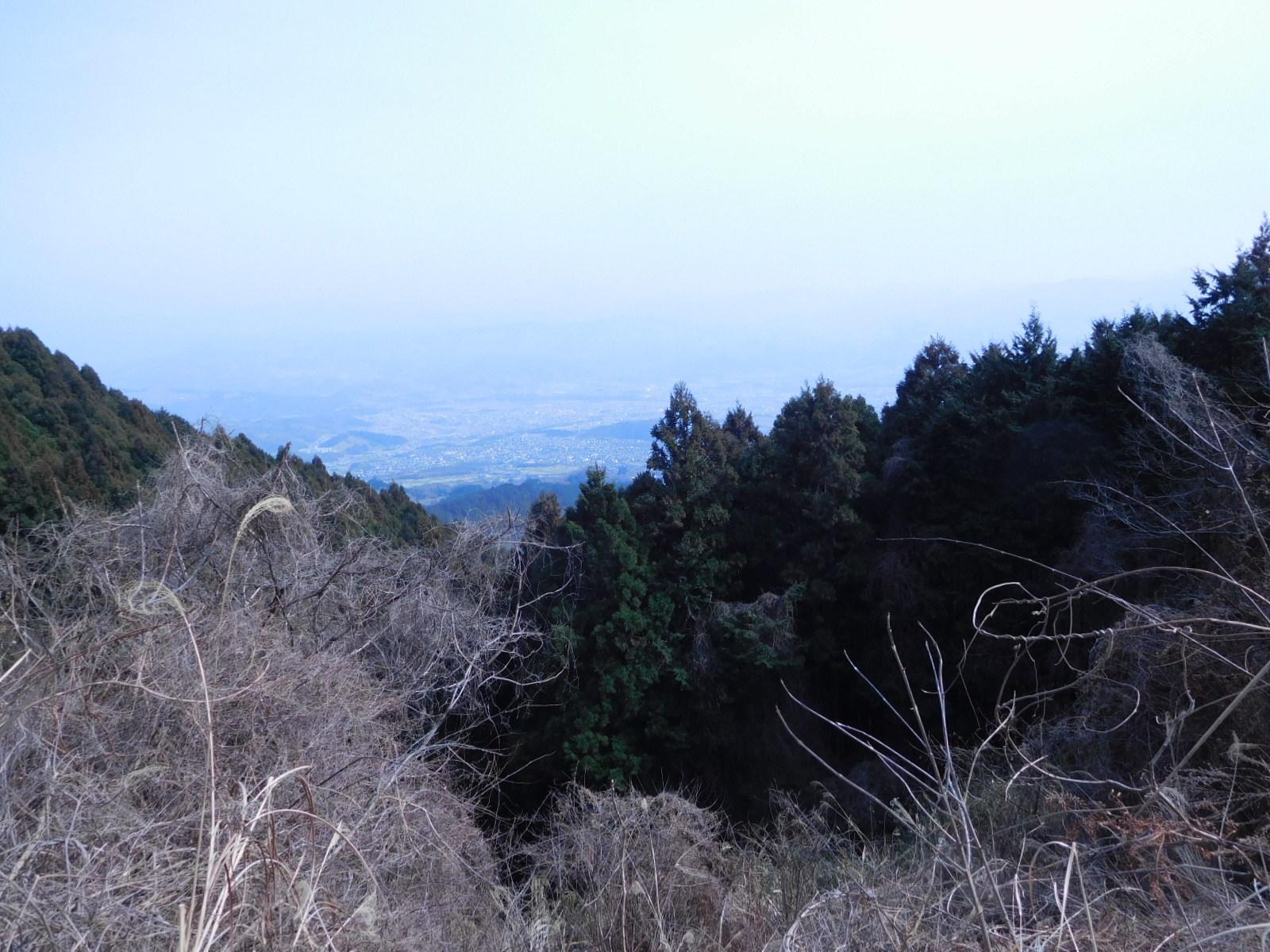 DSCN0143.jpg
