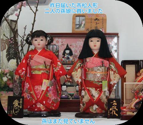 ①孫娘の市松人形