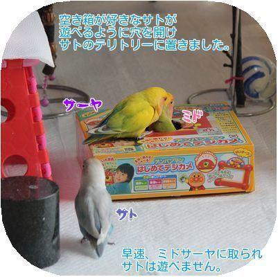 ①サトの空き箱