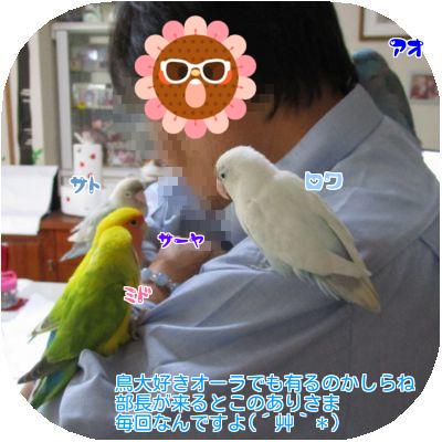 ②部長と鳥