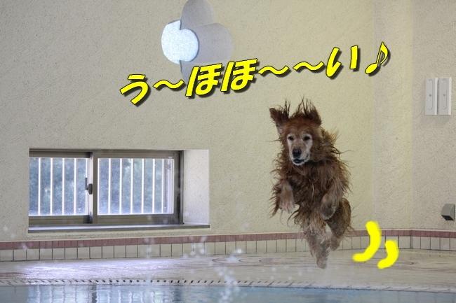 プールとジュリー2 045