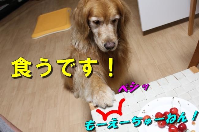 さくらんぼ文庫本 019