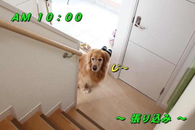 チェア階段 082