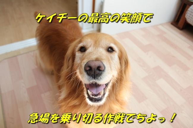 ASIMO雑談 050