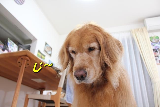 阪神新聞 019