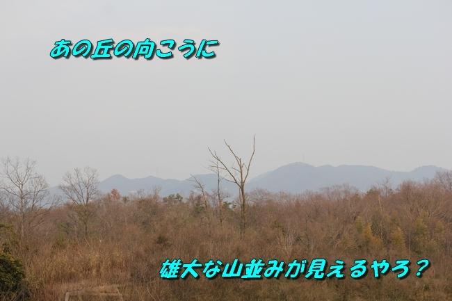 防災公園0330 090