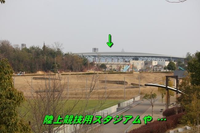 防災公園0330 132