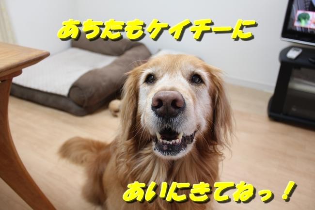 笑顔 015