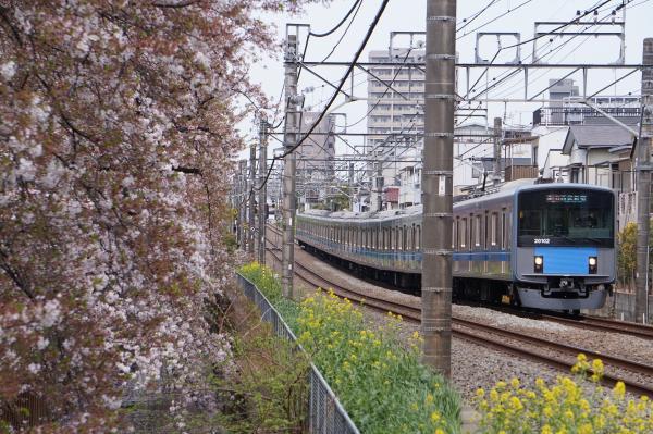 2017-04-15 桜×西武線2