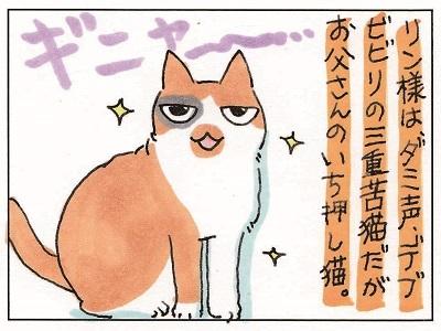 猫じじぃ 1-3