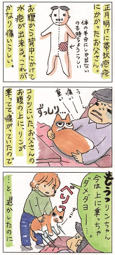 猫じじぃ 2-3