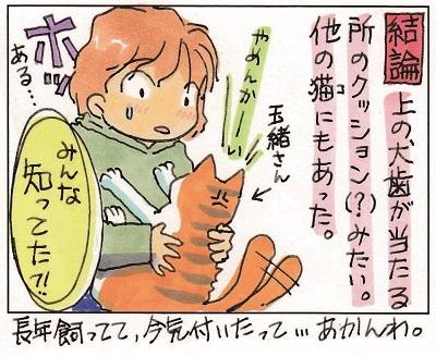 猫~ナゾ多き生物~ 3-3