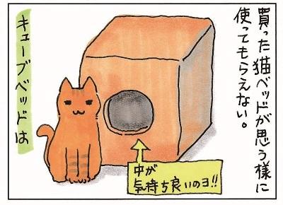 猫が思う様に行かない件 1-3
