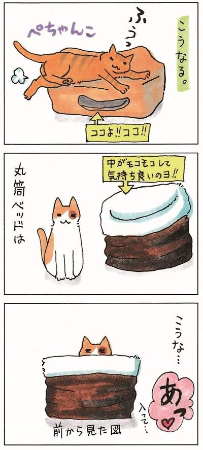 猫が思う様に行かない件 2-3