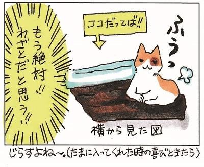 猫が思う様に行かない件 3-3