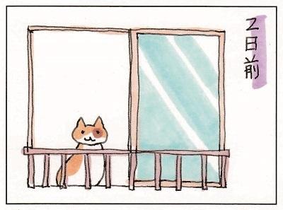 猫占い 1-2