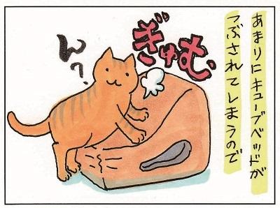 猫が思うように行かない件② 1-2