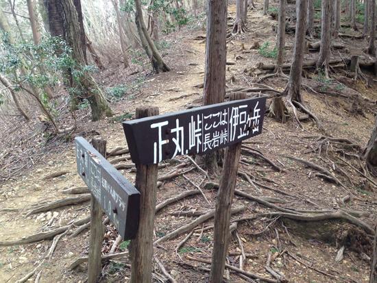 17030912伊豆ヶ岳東尾根