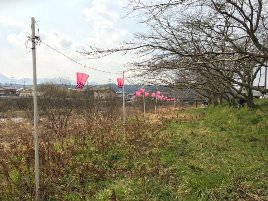 hanasaki_fair201704_005.jpg