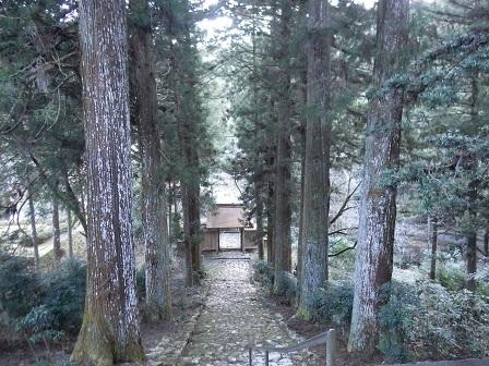 龍沢寺参道