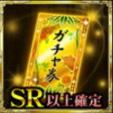 SR確定ガチャ券(天井)