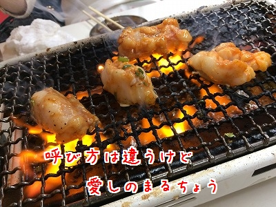 IMG_5630.jpg