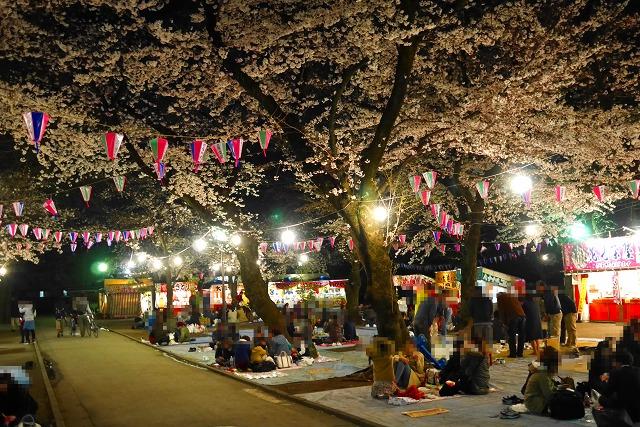 2017-04-04 喜多院 夜桜 014