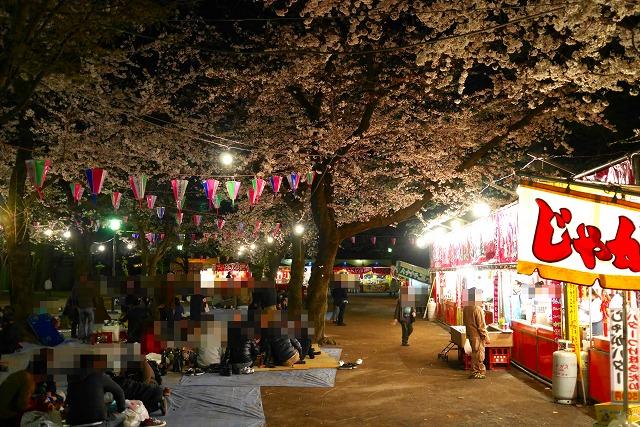 2017-04-04 喜多院 夜桜 002