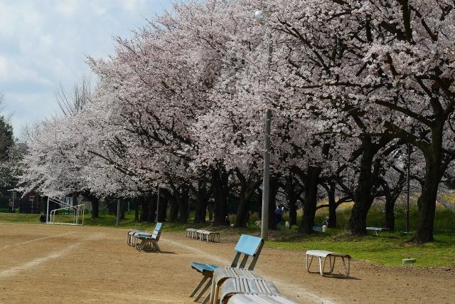 2017-04-06 川越水上公園 082