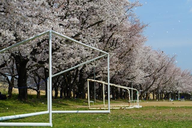 2017-04-06 川越水上公園 070