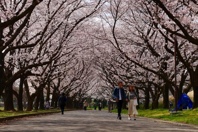 2017-04-06 川越水上公園 052
