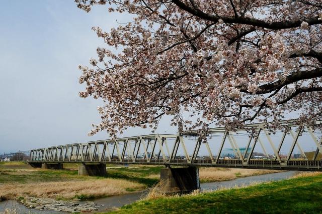 2017-04-06 川越水上公園 138