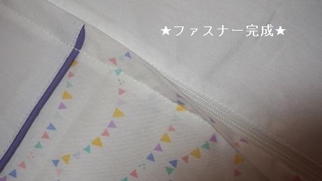 P3110346-1.jpg