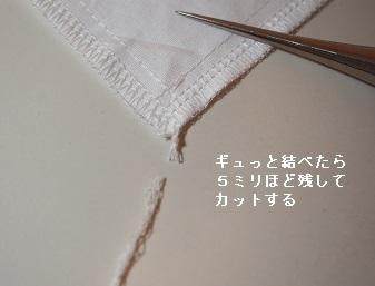 P3110353-1.jpg