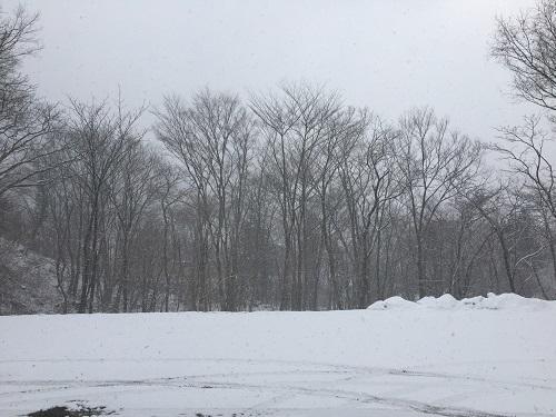 3月8日 寒い