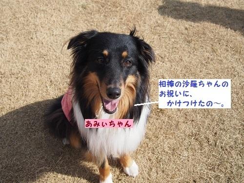あみぃちゃん