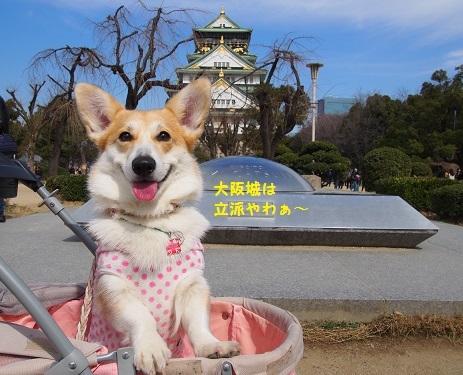大阪城立派や