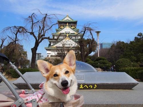 えへっ、大阪城バック