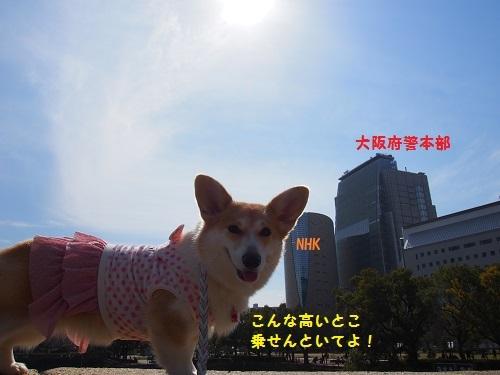 大阪府警察本部前