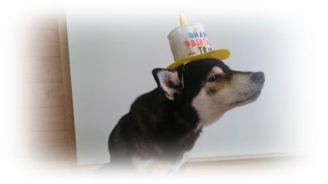 7歳お祝い②