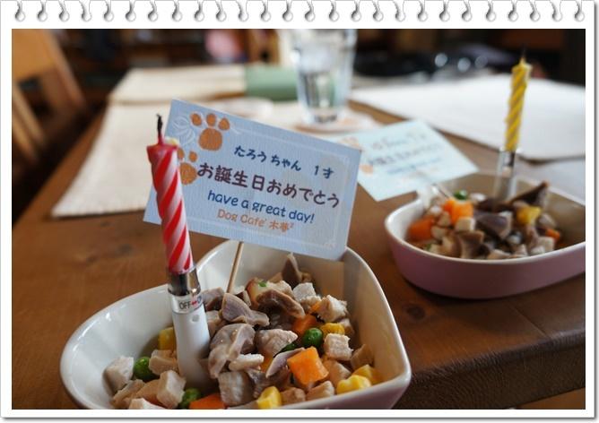 太郎の誕生日③