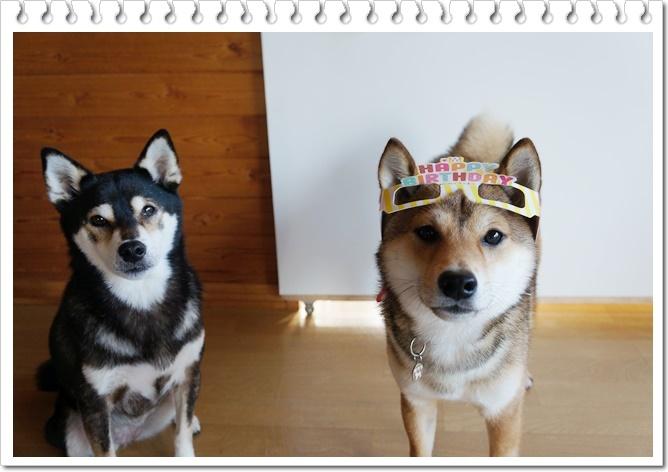太郎の誕生日⑦