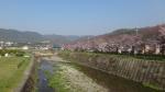 shiamotokakusan